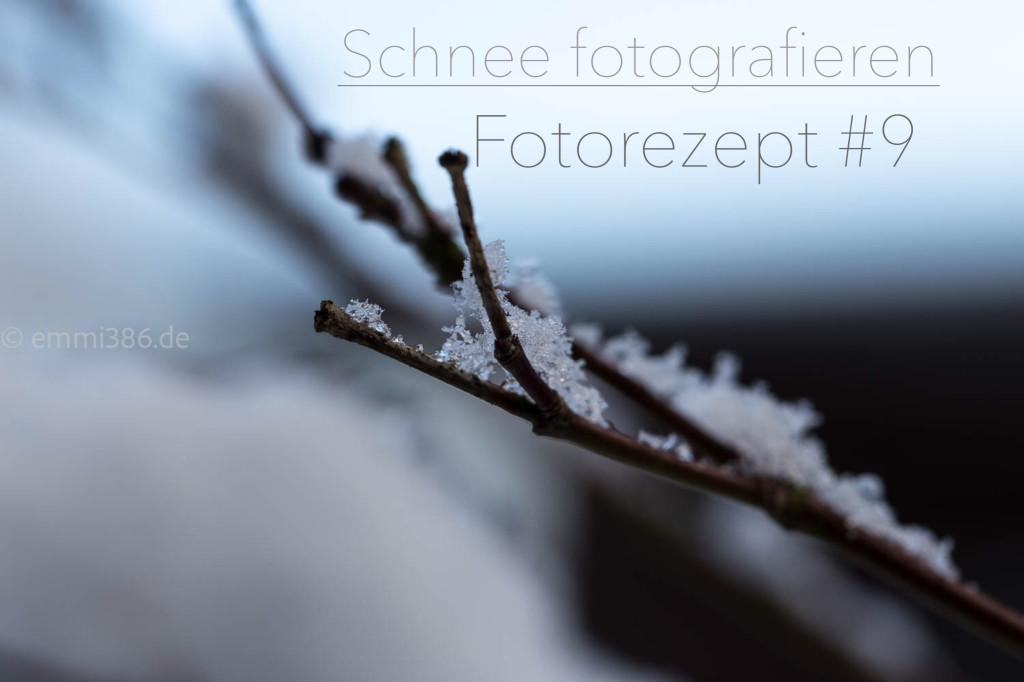 JPEG-Bild-A75AB30E60F9-1